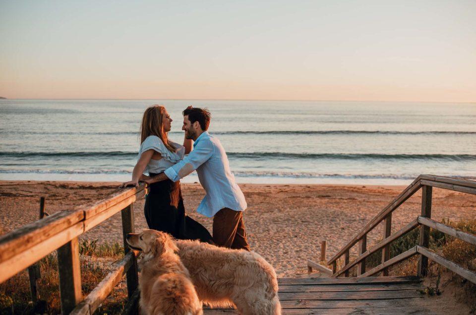 pre-boda con perros